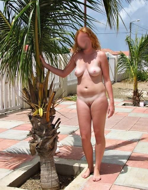 Exhibe sous les cocotiers