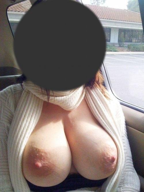 Exhibe en voiture